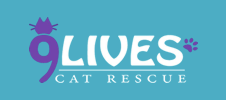 9 Lives Cat Rescue